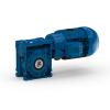 Worm geared motors - Serie W